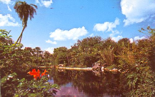 LAGOON BECKONS ON DISCOVERY ISLAND